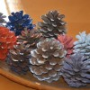 Colourful pinecone decorations